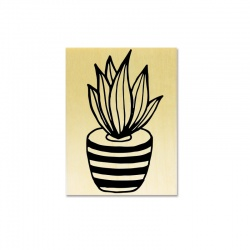 Tampon support bois - Succulente C