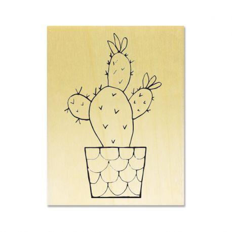 Tampon Cactus 03