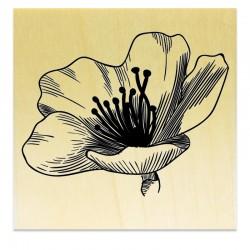 Tampon Collection Fleurs - Fleur A