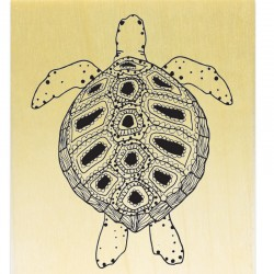 Collection Sea Life - Belle Tortue
