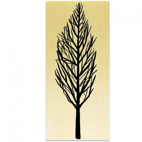 COLLECTION - Branches Hivernales - Arbre Hiver