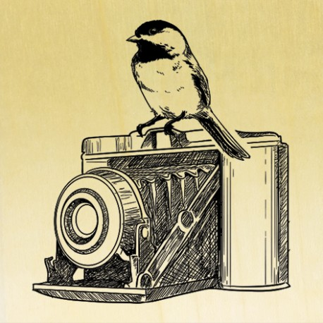 COLLECTION - Le Petit Oiseau va sortir - Appareil Photo Vintage