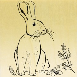 COLLECTION - Animaux des Bois - Lapin