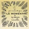 COLLECTION - Histoire de Fleurs - Texte Printemps