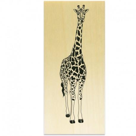 COLLECTION - Plaisirs estivaux - Girafe
