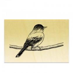 Tampon - Oiseau sur une branche crayon 2