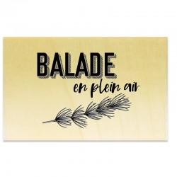 COLLECTION - Esprit Nature - Balade