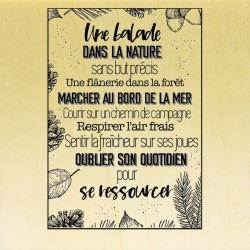 COLLECTION - Esprit Nature - TexteNature