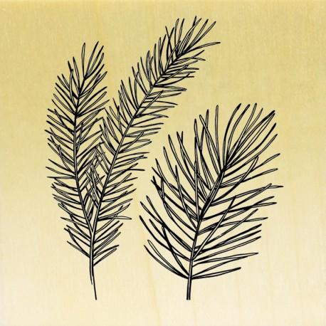 COLLECTION - Esprit Nature - Herbes