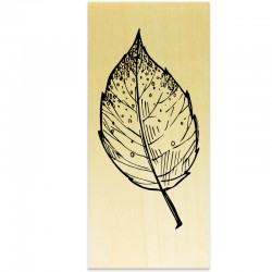 COLLECTION - Esprit Nature - Feuille